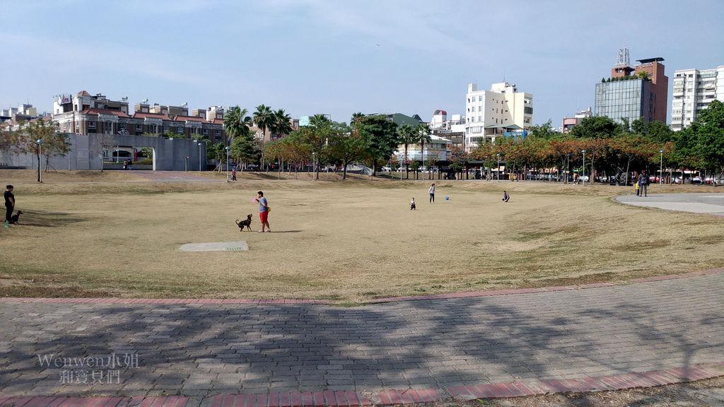2019 嘉義市文化公園 諸羅樹蛙共融遊戲場 (27).jpg