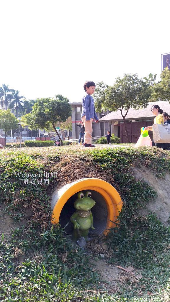 2019 嘉義市文化公園 諸羅樹蛙共融遊戲場 (13).jpg