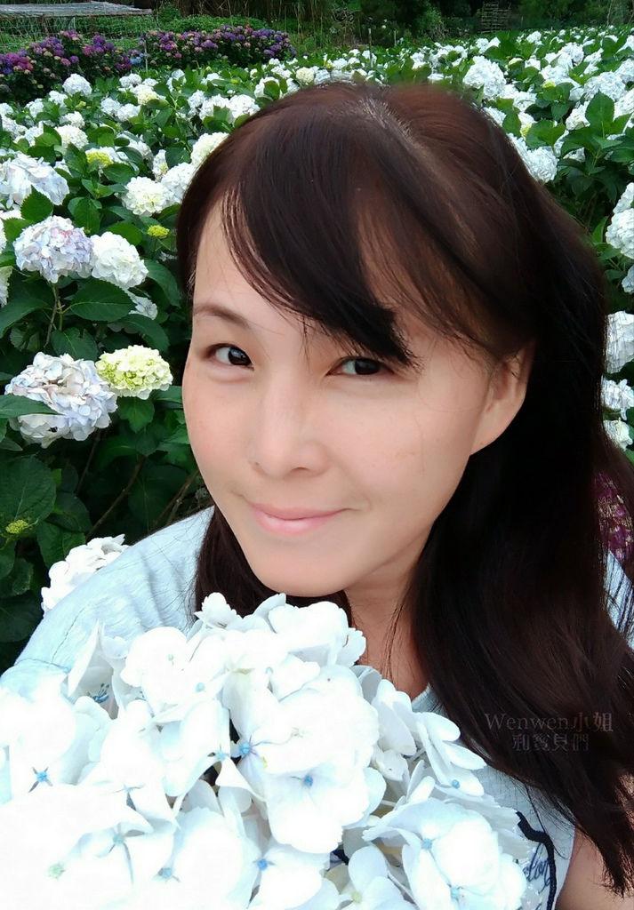 2019.05.21 陽明山竹子湖大賞園繡球花季 (12).jpg
