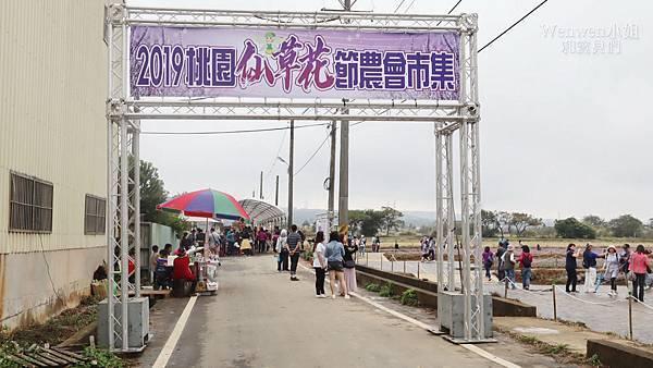 2019.11.23 桃園楊梅仙草花節 (1).jpg