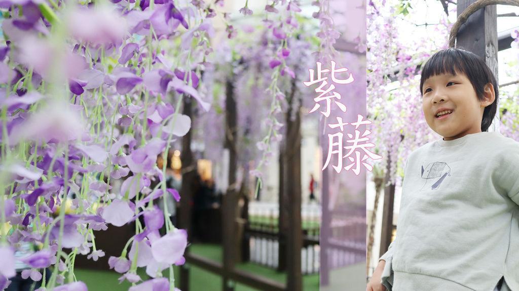 2020.04.05 林口三井outlet mall 日式紫藤花秘境.jpg