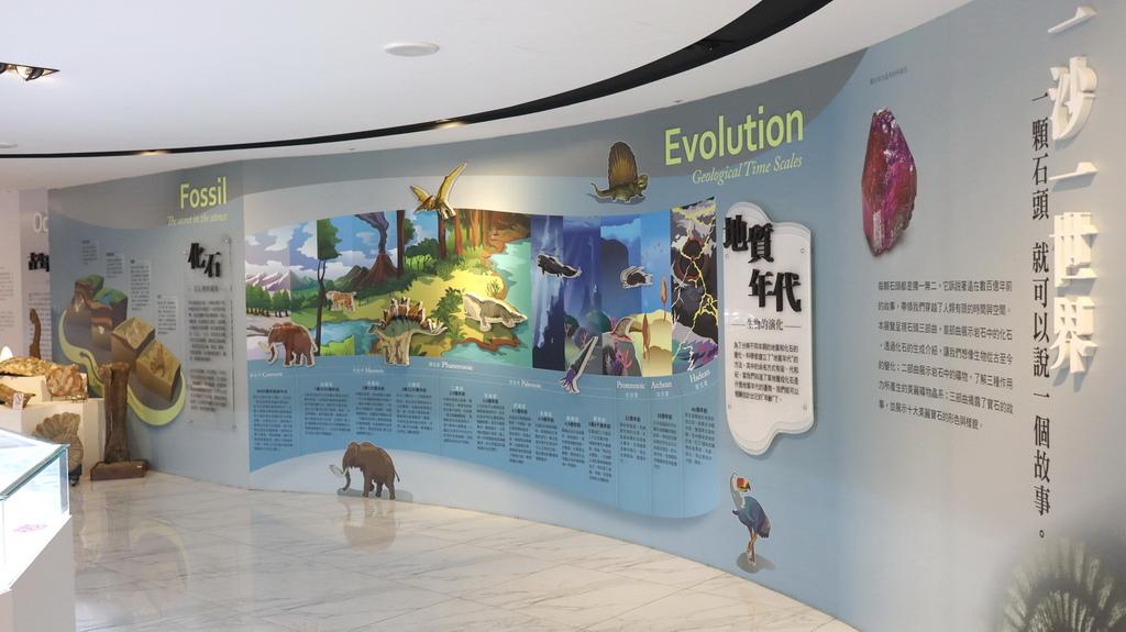 2020桃園親子景點 侏羅紀博物館 化石清修diy 恐龍化石 寶石原礦 (19)_exposure.JPG
