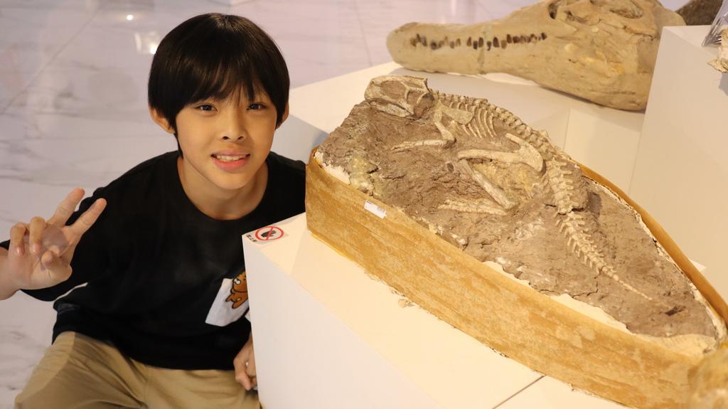 2020桃園親子景點 侏羅紀博物館 化石清修diy 恐龍化石 寶石原礦 (24).JPG