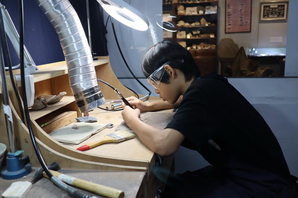 2020桃園親子景點 侏羅紀博物館 化石清修diy 恐龍化石 寶石原礦 (41).JPG