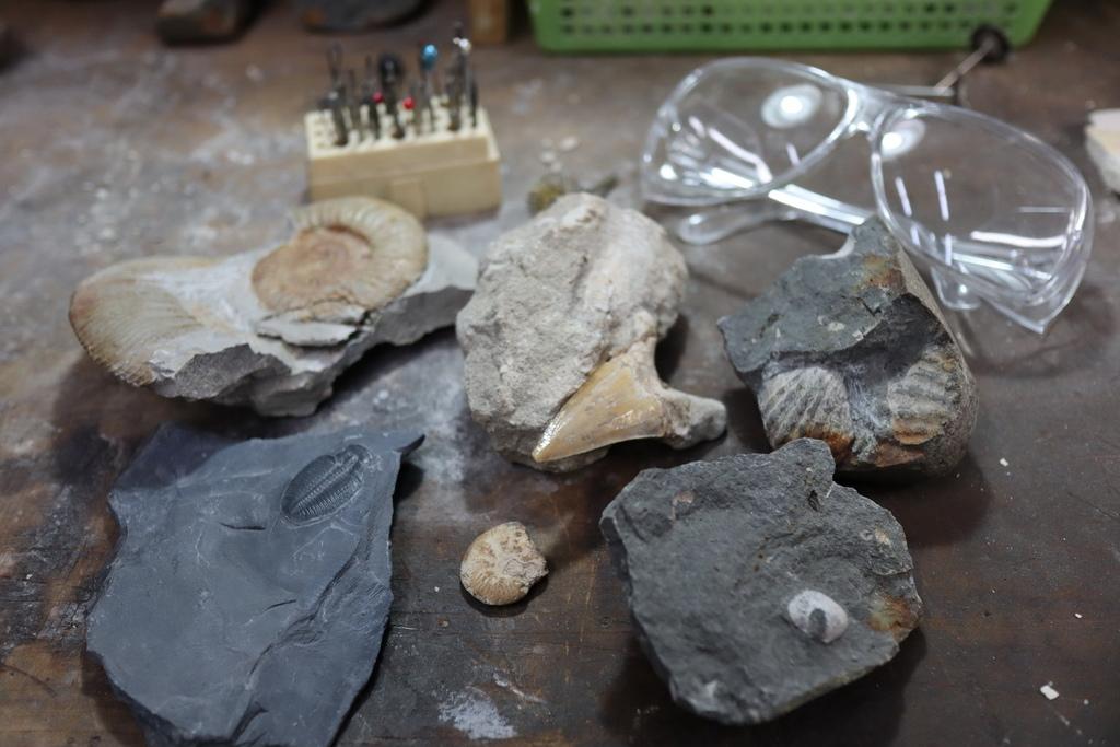 2020桃園親子景點 侏羅紀博物館 化石清修diy 恐龍化石 寶石原礦 (38).JPG