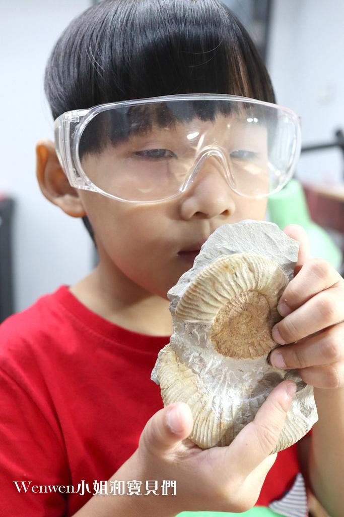 2020桃園親子景點 侏羅紀博物館 化石清修diy 恐龍化石 寶石原礦 (44)_exposure.JPG