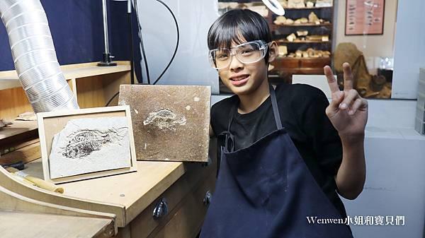 2020桃園親子景點 侏羅紀博物館 化石清修diy 恐龍化石 寶石原礦 (42).JPG
