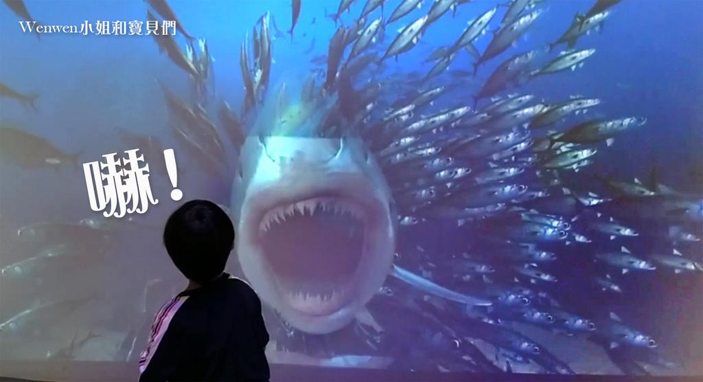 2020.07 嘉義拾粹院鯖魚主題館 AR互動鯊魚來啦.jpg