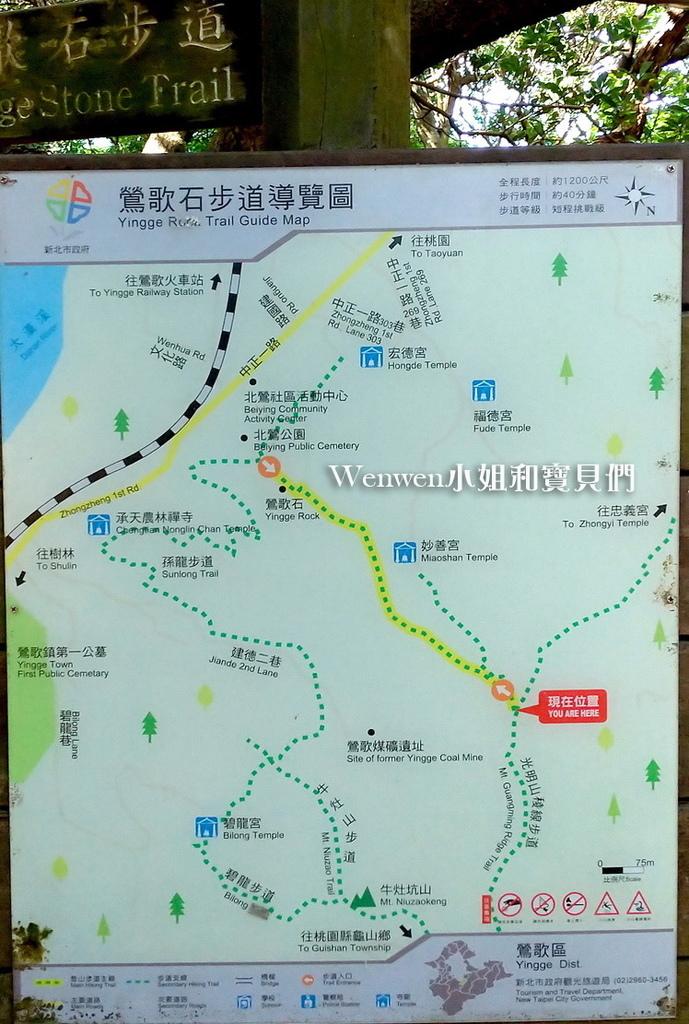 2020.08 新北微笑山線 親子登山步道  光明山稜線步道 (2).jpg