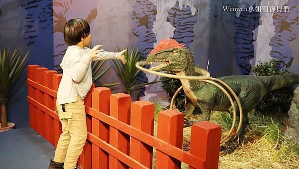 2021寒假展覽 諸羅紀恐龍水世界嘉義站 嘉義親子展覽室內景點 (30).JPG