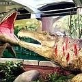 2021寒假展覽 諸羅紀恐龍水世界嘉義站 嘉義親子展覽室內景點 (28).JPG