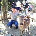 2021墾丁悠活渡假村 阿信巧克力農場 巧克力DIY夜探梅花鹿餵兔子 (6).JPG