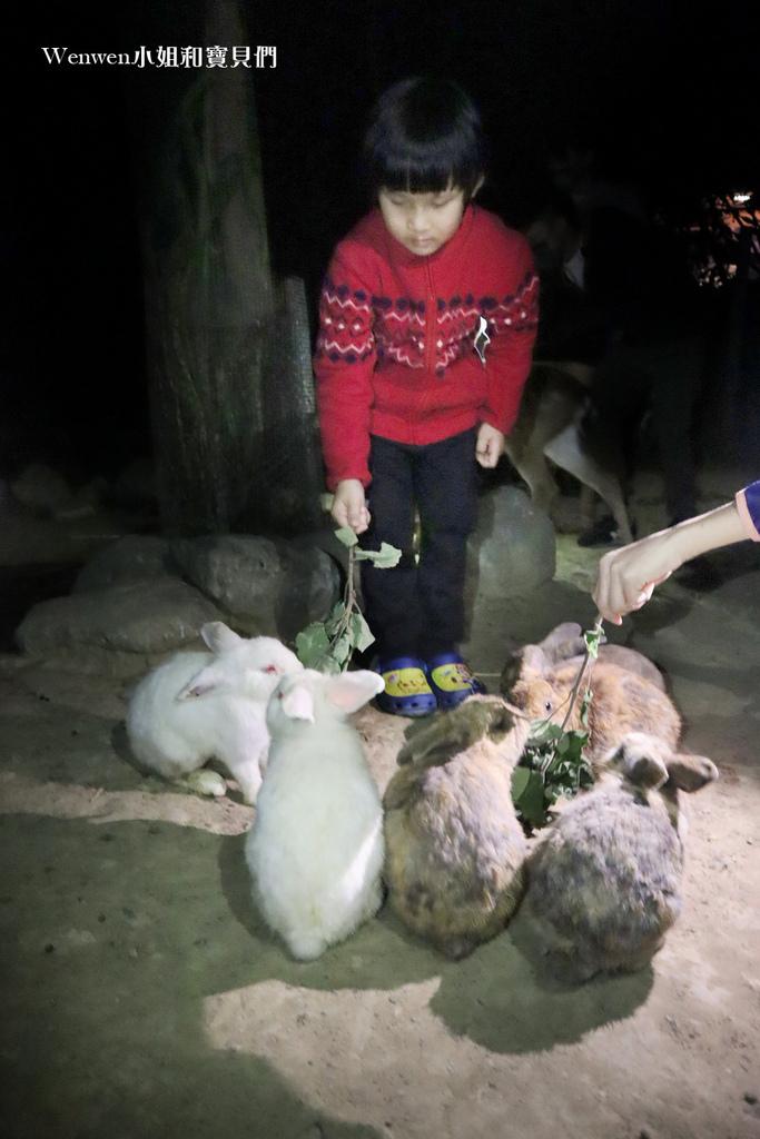 2021墾丁悠活渡假村 阿信巧克力農場 巧克力DIY夜探梅花鹿餵兔子 (7).JPG