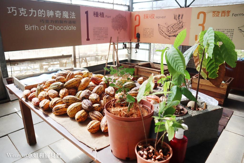 2021墾丁悠活渡假村 阿信巧克力農場 巧克力DIY夜探梅花鹿餵兔子 (1).JPG