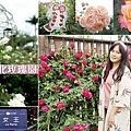 2021台北玫瑰展 花博新生園區台北玫瑰園 (1).jpg
