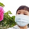 2021台北玫瑰展 花博新生園區台北玫瑰園 (35).jpg