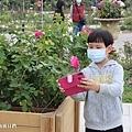 2021台北玫瑰展 花博新生園區台北玫瑰園 (34).jpg