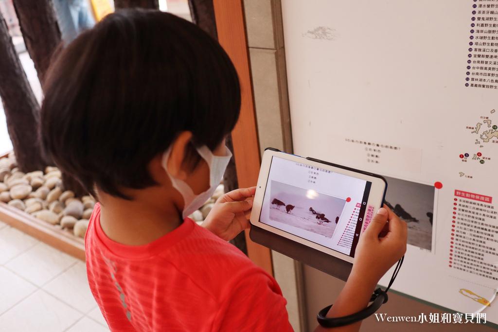 2021苗栗親子景點 火炎山生態教育館 3D彩繪階梯 AR體驗 闖關送禮物 (7).JPG