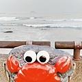 2021.03 野柳地質公園順遊景點 龜吼公園看可愛螃蟹 (7).jpg