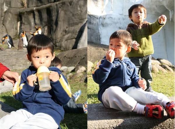 2010.12.17 木柵動物園一日遊