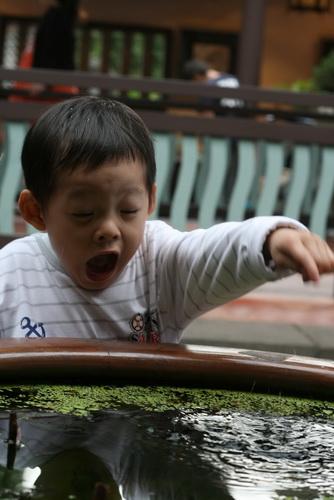 2010.11.20 林本源園邸 (56).jpg