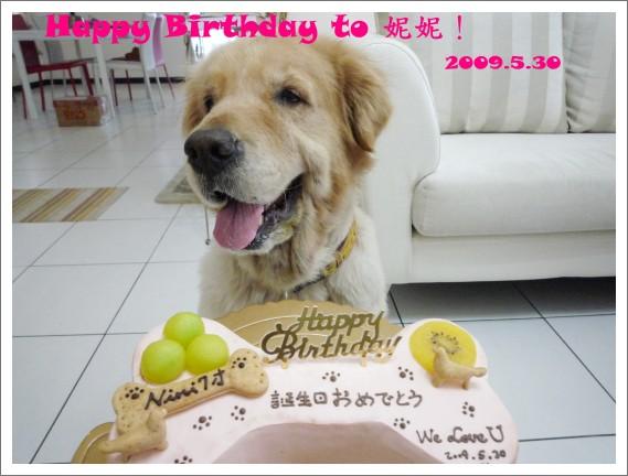 P1000646 Happy Birthday