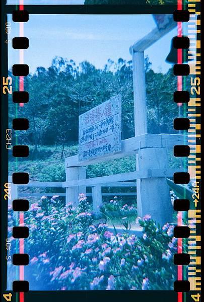 spring farm_11.JPG