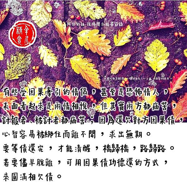 20201201 (18).jpg