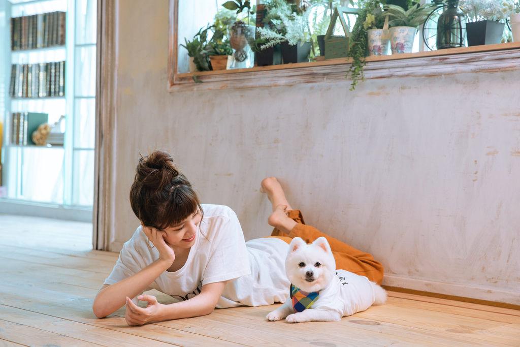 寵物保健品推薦|威旺VIVAMUNE,特定犬種為何常見有關節問題?