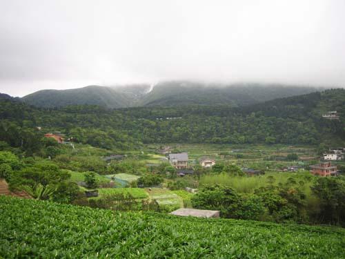 小百岳之---七星山  (NO--1) 157