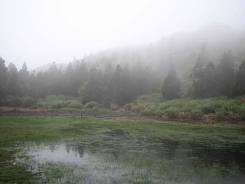 小百岳之---七星山  (NO--1) 011