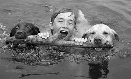 狗狗教你學游泳.jpg