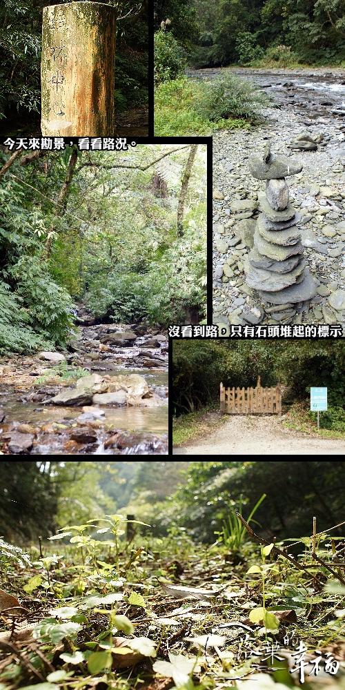 福山植物園(1).jpg