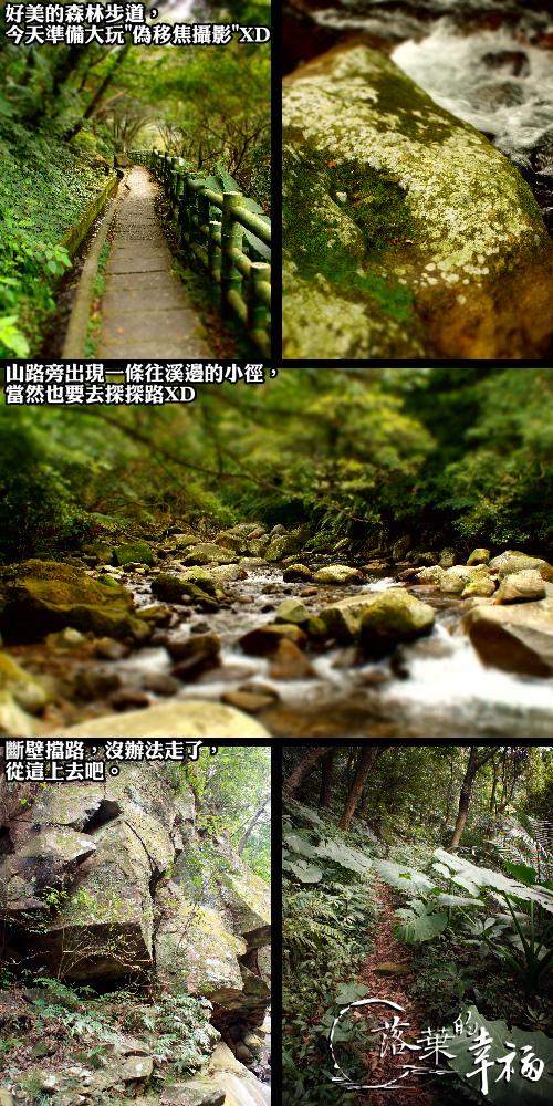 青山瀑布(5).jpg