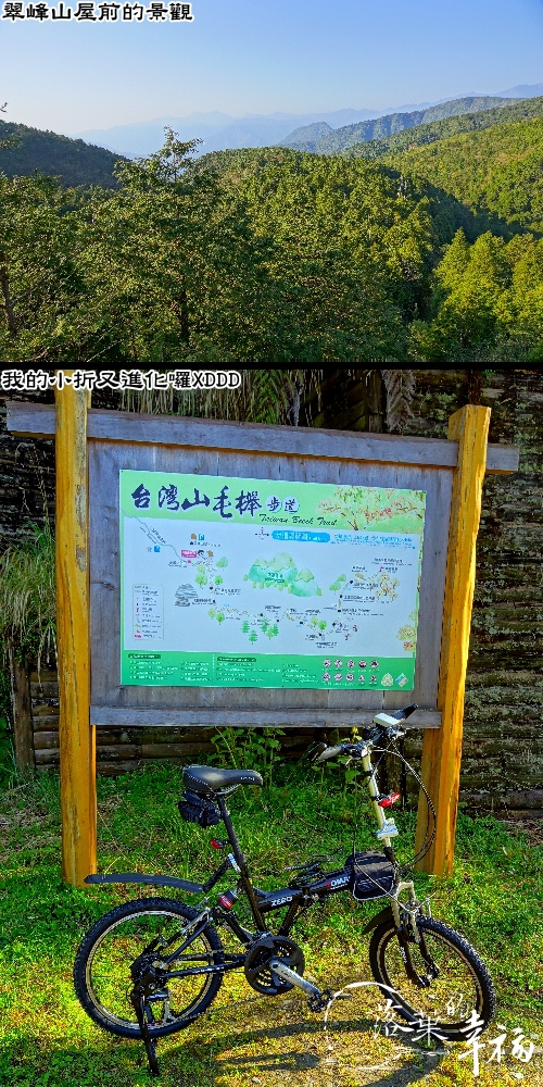 台灣山毛櫸步道(1).jpg