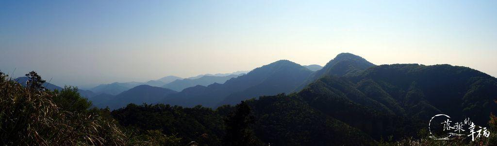 台灣山毛櫸步道(3).jpg