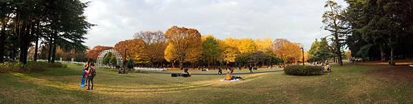 代代木公園(1).jpg