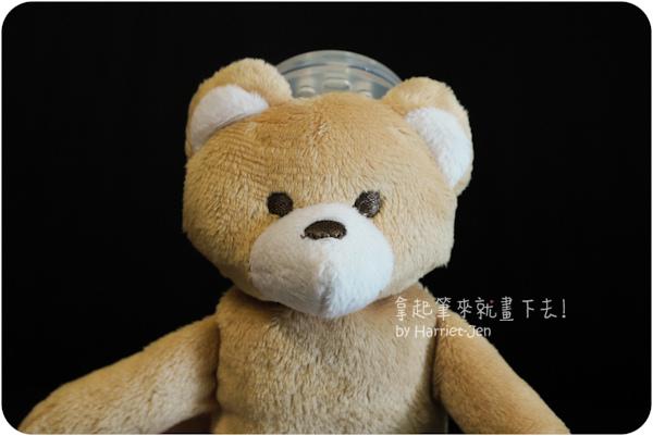 bear-10.jpg