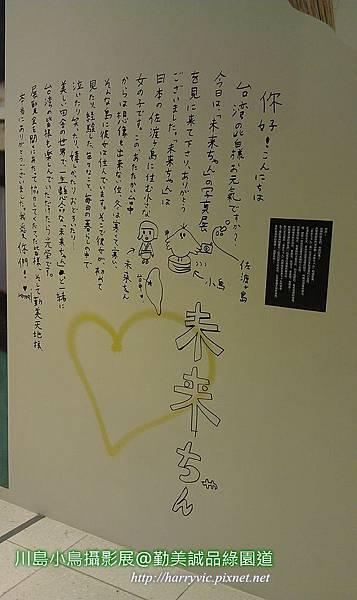 川島小鳥攝影展