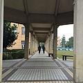 花蓮-東華大學長廊
