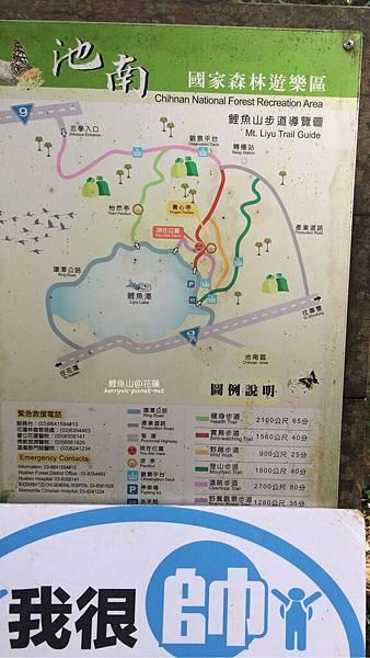花蓮-鯉魚山登山步道