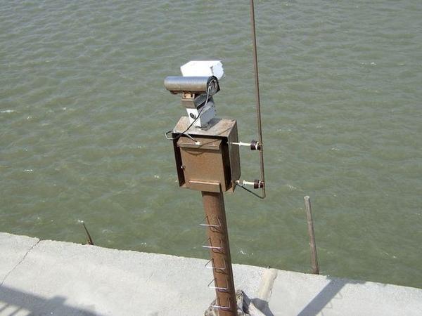 矗立河口的監視器