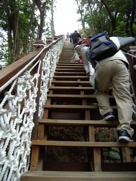 又是一個超陡坡