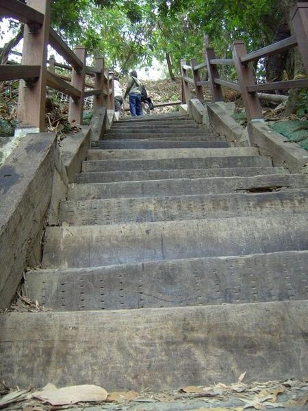 大坑10號步道陡峭