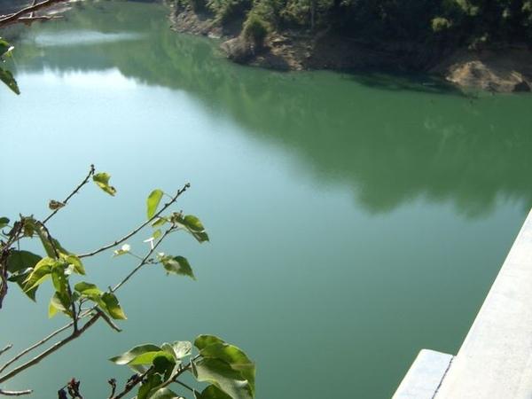 大湖鯉魚潭
