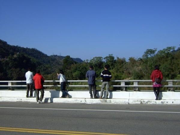 大湖鯉魚潭橋邊