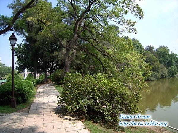 清華大學-湖