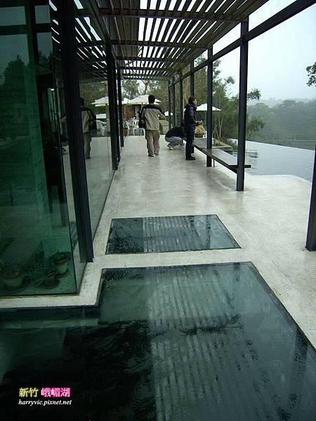 玻璃下也是水池
