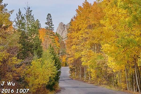 加州山脈秋景