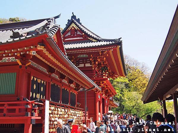 鎌倉鶴岡八幡宮16